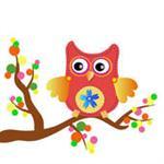 owl4 image